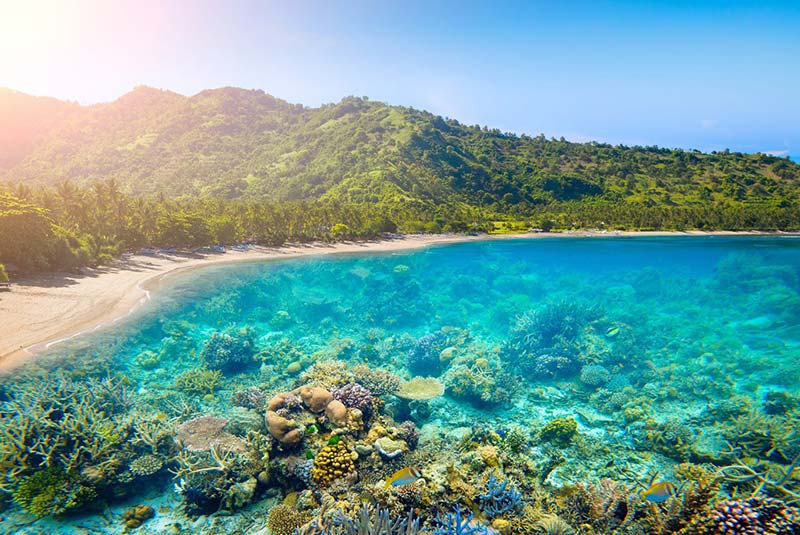 Great dicing in pristine waters are just one of the draws that create a Lombok family-friendly tourism destinationLombok