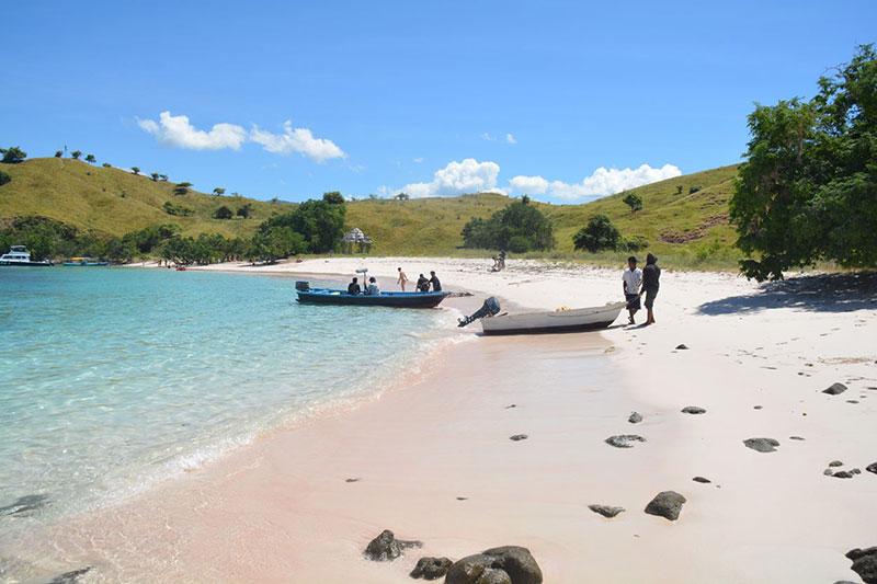 Komodo Island's Famous Pink Beach