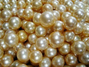 Lombok Pearls
